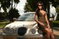 Картинка машина, авто, грудь, девушка, обои, брюнетка, сиськи