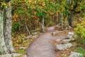 Картинка осень, лес, деревья, камни, тропинка