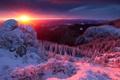 Картинка закат, лес, румыния, солнце, деревья, зима, горы