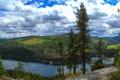 Картинка лес, пейзаж, природа, озеро, фото, Вашингтон, США