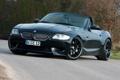 Картинка спорткар, BMW, тюнинг, передок, чёрный, кусты, дорога