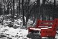 Картинка снег, парк, скамья