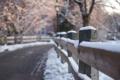 Картинка bokeh, снег, забор, дорога