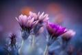 Картинка макро, цветы, лепестки, сиреневые