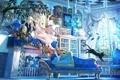 Картинка кошка, девушка, бабочки, отражение, комната, диван, дерево