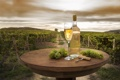 Картинка пейзаж, зеленый, вино, бокал, поля, бутылка, виноград