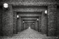 Картинка ч/б, фонари, арки, by Robin de Blanche, Bricks