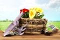 Картинка корзина, примула, садовый инвентарь, primrose, basket, flowers, цветы