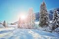 Картинка зима, снег, деревья, хижина