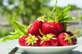 Картинка ягоды, клубника, fresh berries, strawberry, миска