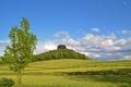 Картинка небо, трава, пейзаж, скала, дерево, холмы