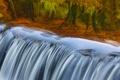Картинка осень, отражение, река, Англия, пороги, Девон