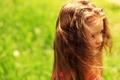 Картинка зелень, трава, солнце, природа, дети, фон, обои
