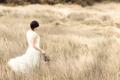 Картинка поле, девушка, цветы, настроение