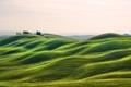 Картинка трава, деревья, холмы, Италия, дом, Тоскана
