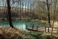 Картинка озеро, пруд, скворечник, мостик