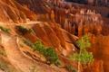 Картинка деревья, горы, камни, скалы, каньон