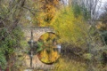 Картинка осень, деревья, мост, парк, арка, Испания, Сеговия