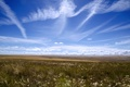 Картинка небо, облака, степь, голубое, горизонт