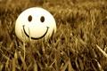 Картинка трава, макро, мячик, смайлик