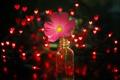 Картинка цветок, свет, огни, розовый, красные, гирлянда, баночка