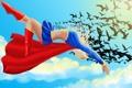 Картинка небо, полет, птицы, арт, костюм, плащ, DC Comics