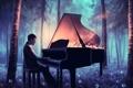 Картинка лес, ночь, музыка, волшебство, арт, пианино, одуванчики