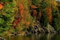 Картинка осень, лес, деревья, река