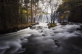 Картинка природа, пейзаж, река, осень