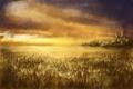 Картинка пшеница, поле, небо, облака, арт, колосья
