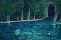Картинка вода, деревья, камни, паутина, дверь, затопление