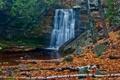 Картинка осень, лес, листья, деревья, река, камни, водопад