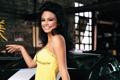 Картинка актриса, брюнетка, красотка, Натали Келли, натали, nathalie kelley, fast and the furious: tokyo drift
