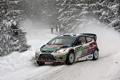 Картинка Ford, Зима, Снег, Лес, WRC, Rally, Fiesta
