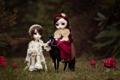 Картинка природа, лошадь, девочки, игрушки, грибы, куклы