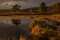 Картинка осень, Англия, камень, деревья, небо, озеро, тучи