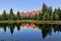 Картинка лес, горы, озеро, отражение, ели