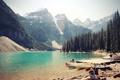 Картинка лес, горы, озеро, люди, лодки