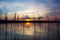 Картинка трава, солнце, озеро, отражение, вечер