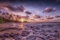Картинка пейзаж, закат, пальмы, океан, берег