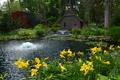 Картинка США, камни, фонтан, пруд, желтые, Detroit Garden, кусты