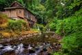 Картинка лес, река, мельница, Washington, штат Вашингтон, Woodland, Вудленд
