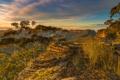 Картинка море, небо, трава, деревья, камни, скалы