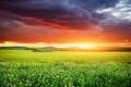 Картинка закат, nature, sky, трава, небо, поле, sunset