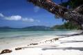 Картинка песок, пляж, океан, фокус, ствол