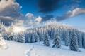 Картинка зима, небо, облака, снег, деревья, пейзаж, горы
