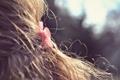 Картинка волосы, заколка, макро