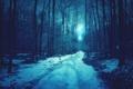 Картинка зима, снег, деревья, дорога