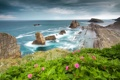 Картинка небо, облака, цветы, горы, скалы, побережье, курорт