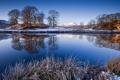 Картинка зима, иней, трава, снег, деревья, река, берег